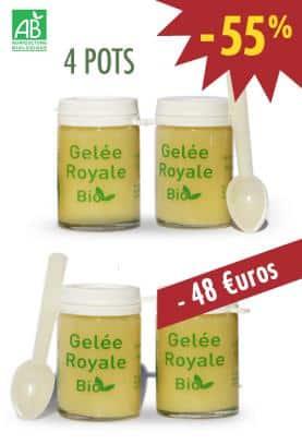 GELEE ROYALE BIO TYPE 1 - Lot de 4X25g