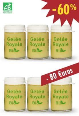 GELEE ROYALE BIO TYPE 1 - Lot de 6X25g