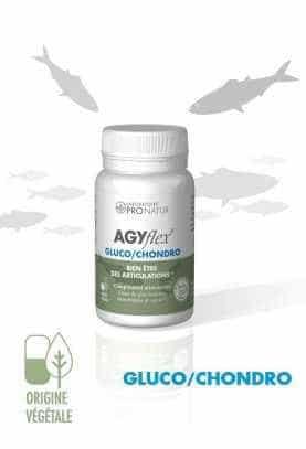 Lot de 3 + 1 GRATUIT AGYflex® GLUCO/CHONDRO