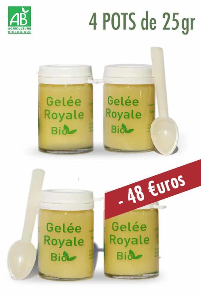 GELEE ROYALE BIO TYPE 1 4X25g