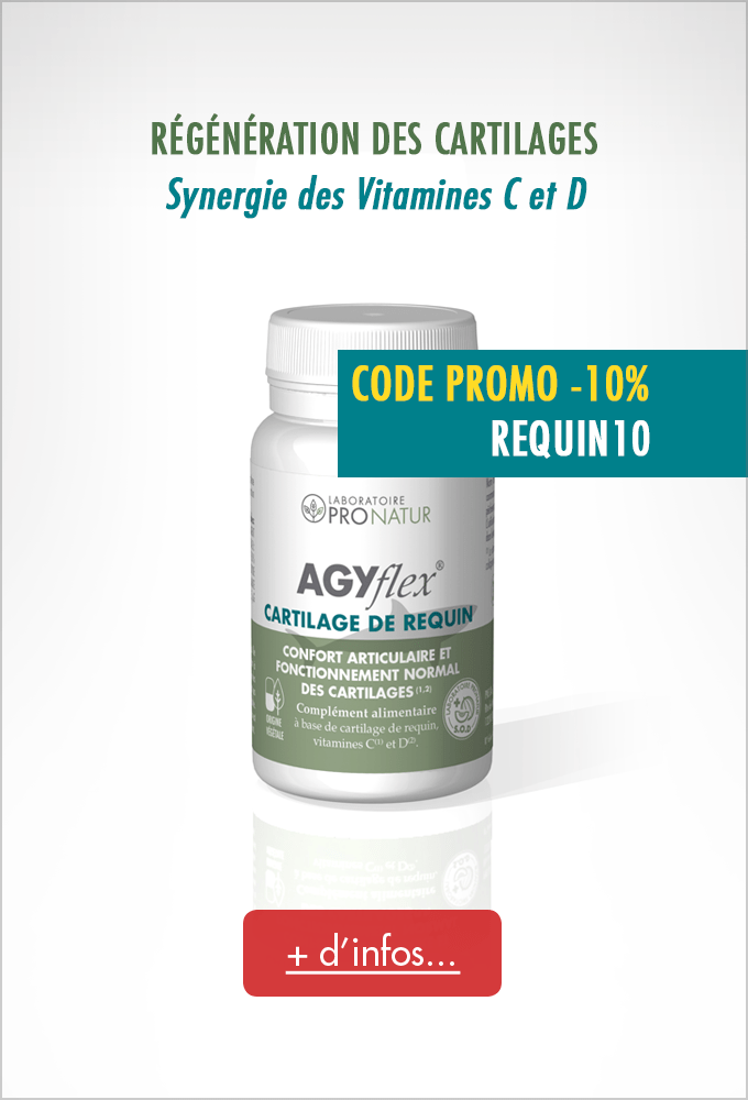 CARTILAGE REQUIN REGENERATION PROMO 10%
