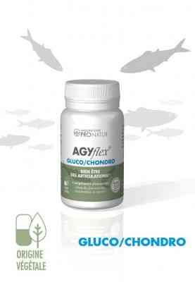 AGYflex® GLUCO/CHONDRO du Laboratoire PRONATUR à Saint Rémy de Provence