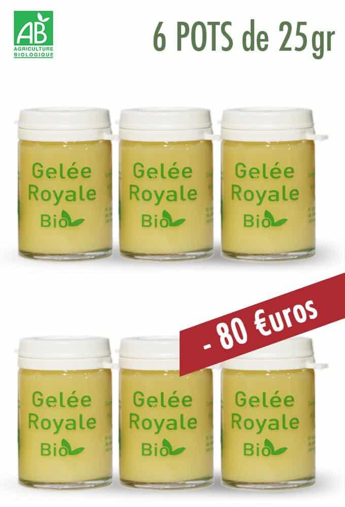 GELEE ROYALE BIO 6X25g